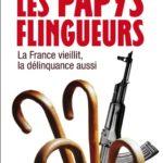 Couv._Papys_flingueurs.jpg
