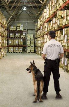 securite.jpg