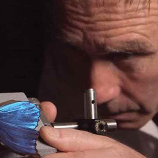 SERGE BERTHIER, MOUSTIQUES ET SCARABÉES. Chercheur à l' INSP (institut des nanosciences de Paris ), Serge Berthier aime les moustiques. L'insecte qui cisaille la peau afin que l'homme ne sente rien durant la piqûre, a donné des idées et des pistes pour de nouveaux outils chirurgicaux. Les Japonais ont étudié la trompe de l'insecte pour élaborer des aiguilles médicales en titane, de forme conique et non plus cylindrique. Les ailes des cigales ou des libellules qui possèdent des nanostructures en sillons anti-reflets et surtout anti-bactéries, intéressent au plus haut point les spécialistes de revêtements d'instruments chirurgicaux.  Serge Berthier, toujours, recommande les potentialités  de certaines familles de scarabées qui sont particulièrement doués en récupération hydrique : « Leurs carapaces à bosse, hydrophobes et hydrophiles selon les endroits, font couler le liquide jusqu'à la bouche. De quoi inspirer des tentes récupératrices de vapeur d'eau dans les déserts… ». Des réponses moins polluantes et énergivores, de meilleure qualité et de moindre coût, ne demandent qu'à être recueillies chez les plantes, les champignons, les animaux.
